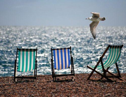 ¿Vamos a la Playa? Disfruta de la Playa con Esta Infografía