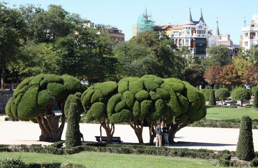 planes con tu perro en Madrid - Travelodge Hoteles